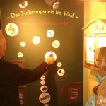 waldmuseum3